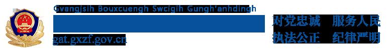 广西壮族自治区公安厅网站